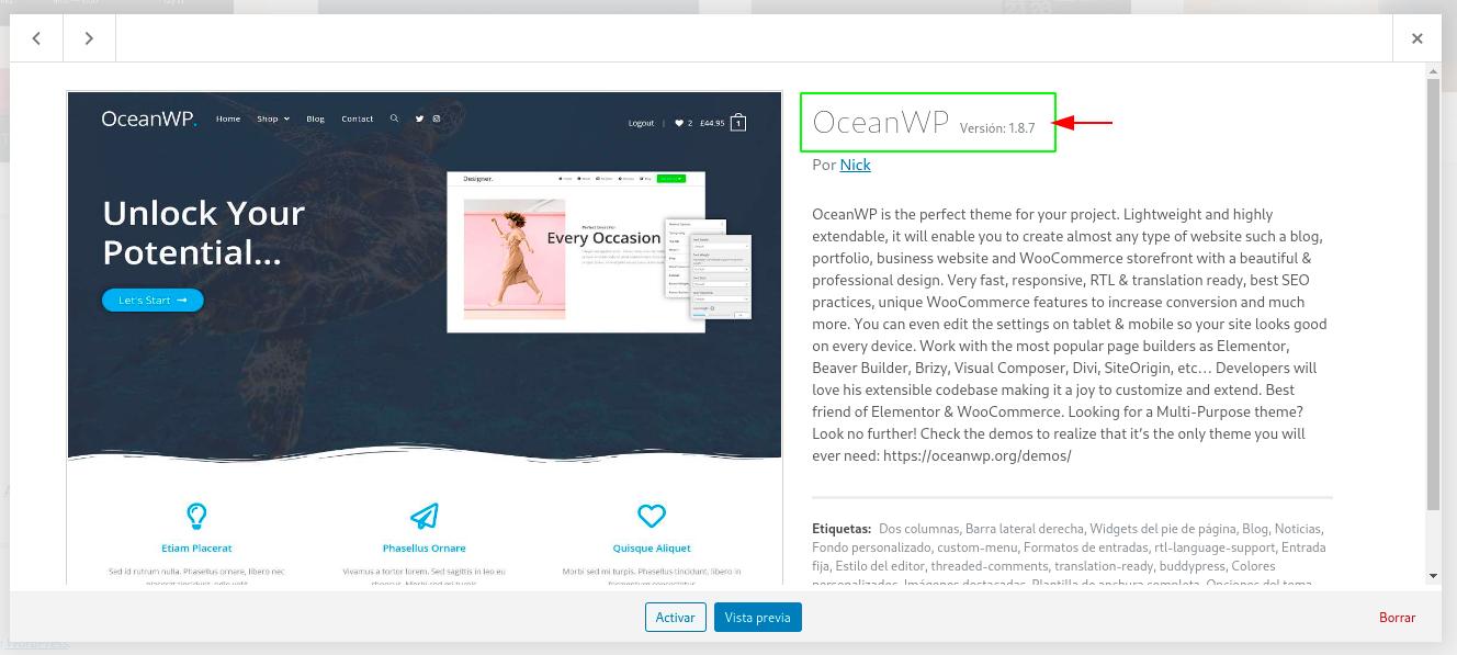 wpscale-actualizar-un-tema-o-plugin-por-ftp-128