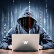 nettoyage wordpress piraté hacké